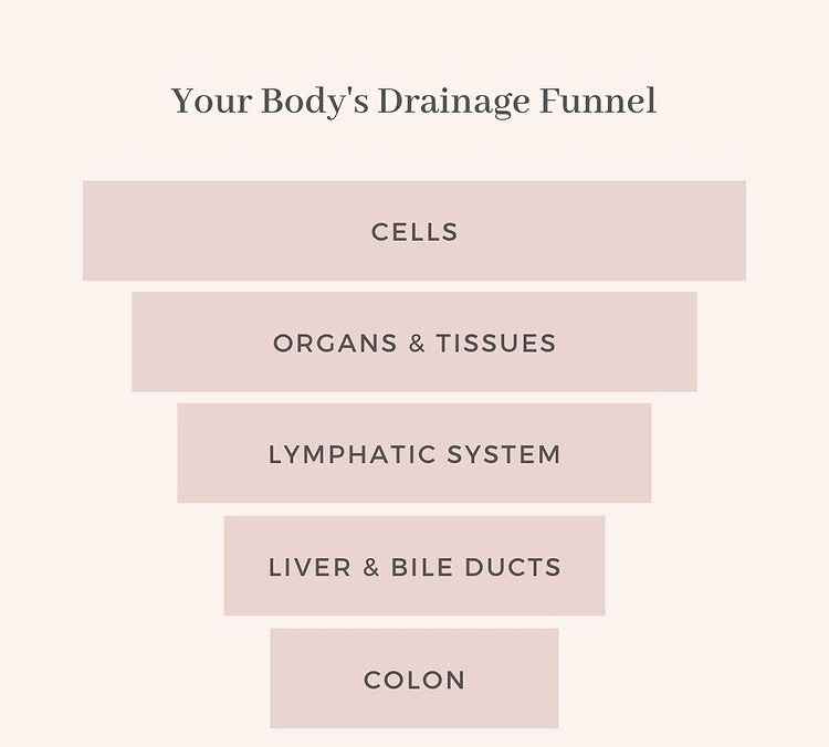 Full Body Detoxification Support with Essential Oils