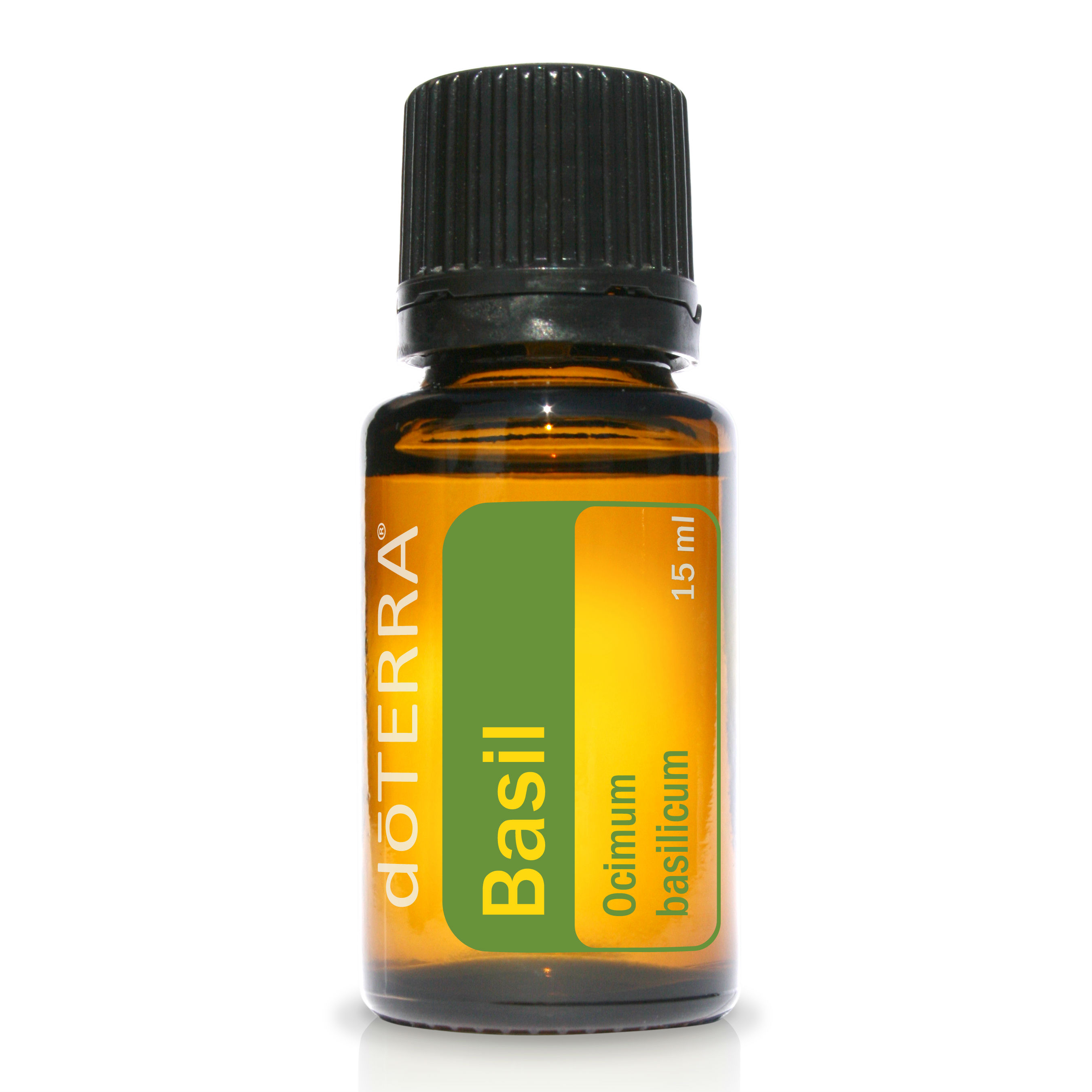 Basil Essential Oil | Rebecca Hintze