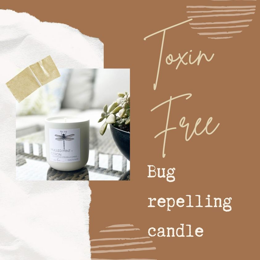 Toxin-free bug repelling candle #toxinfreecandle #insectrepellingcandle Use code HHH10 to get 10% off at checkout!