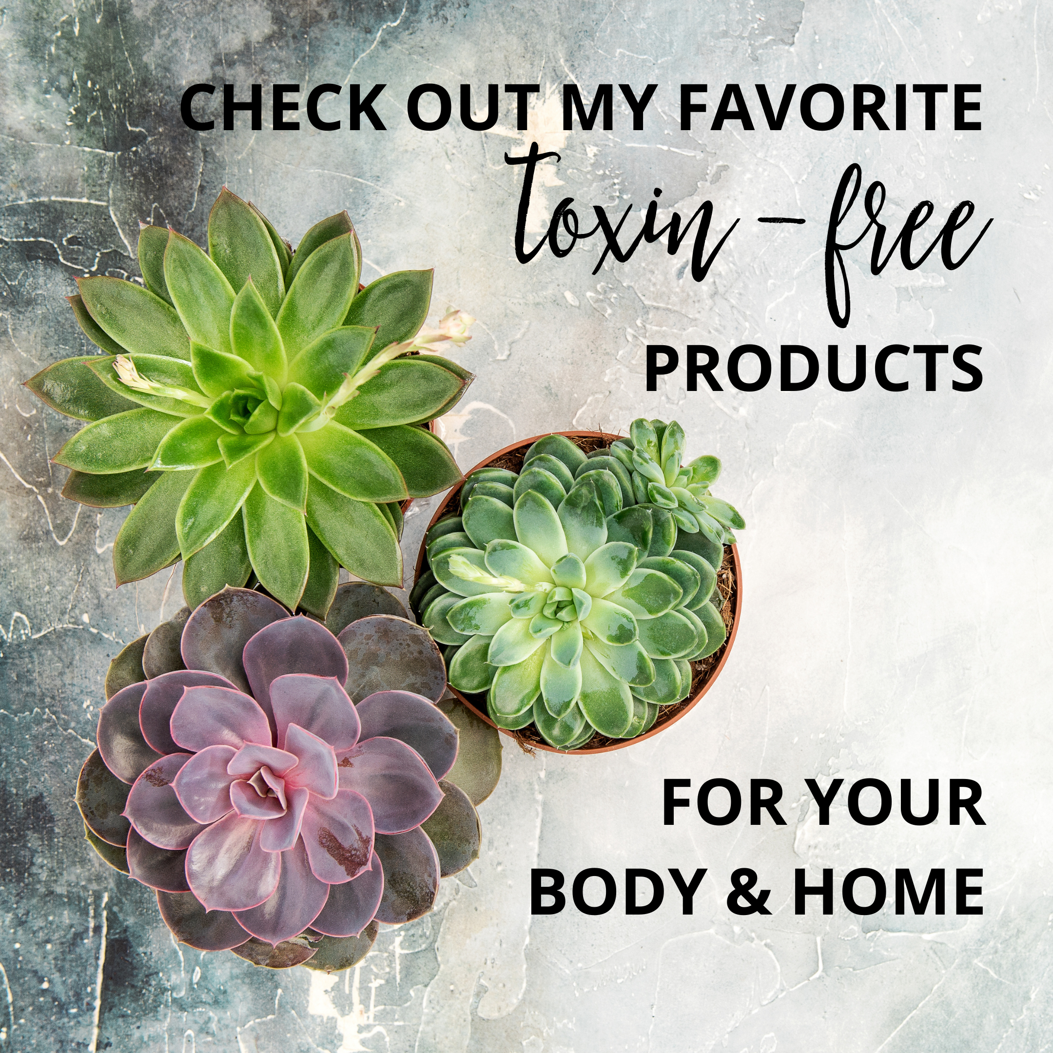 Check out some of my favorite toxin-free products for your body and home!