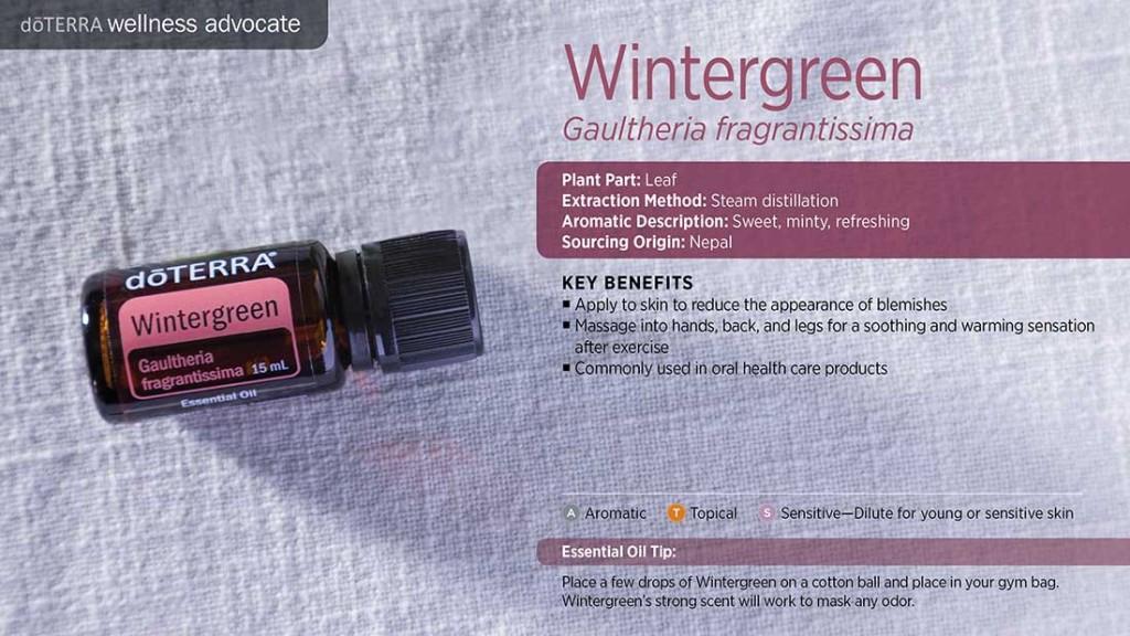 doTERRA Wintergreen