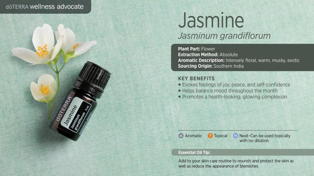 jasmine_singles_3000x1689